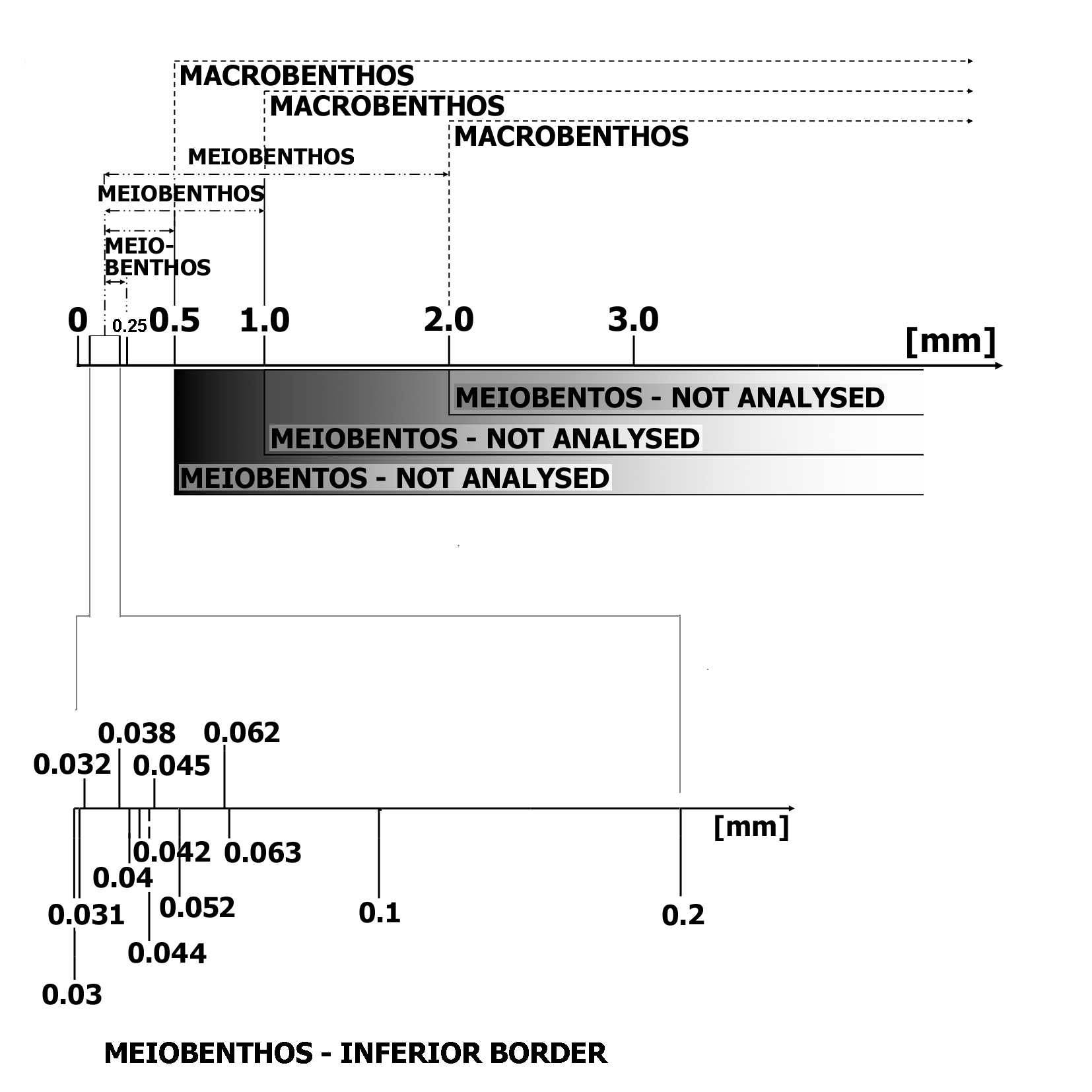 Fig.1. Different definitions and practical criterion for meio- and macrobenthos analysis (describe in text)