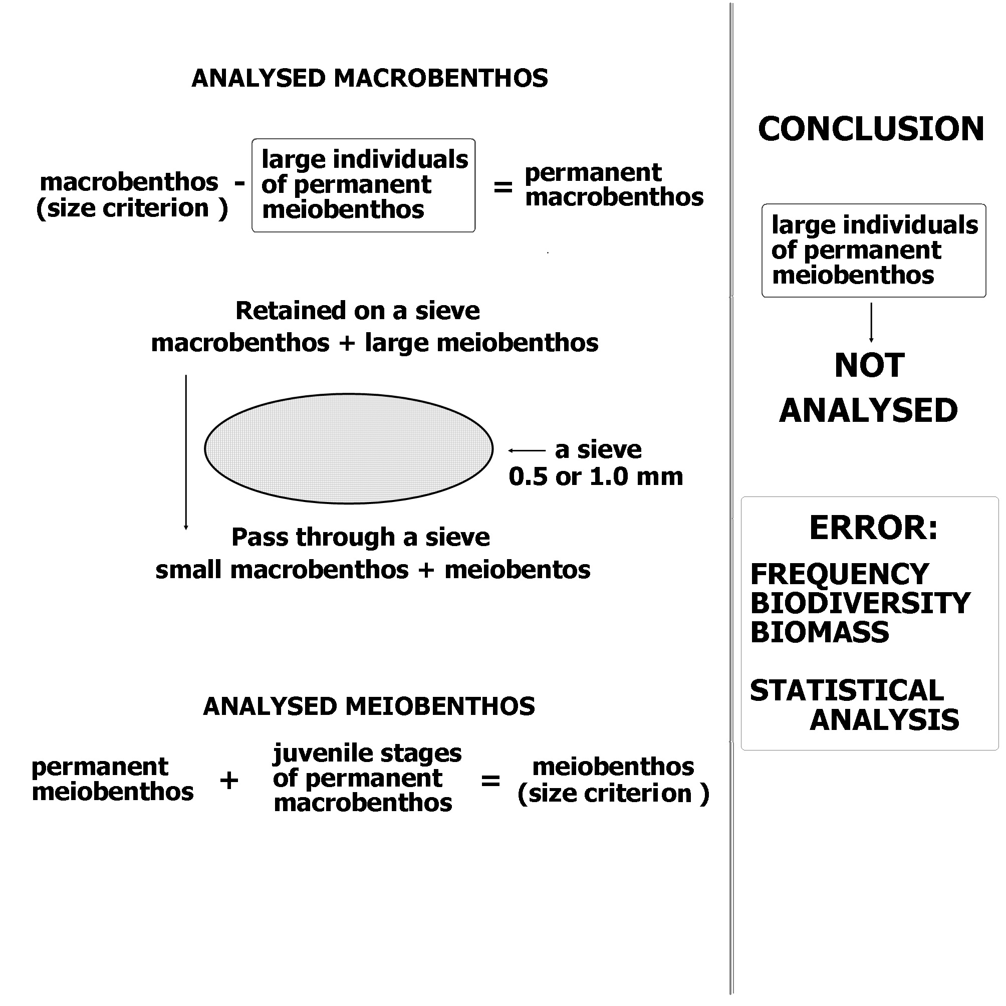 Fig.2. A result of used common procedures for collected meio- and macrobenthos