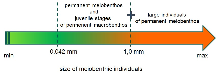 Fig. 4. The criterion used in MeioEco analysis