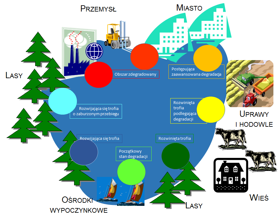 Ryc. 3. Zróżnicowanie zanieczyszczenia jeziora w zależności od sposobu zagospodarowania poszczególnych obszarów przylegających do linii brzegowej zbiornika,