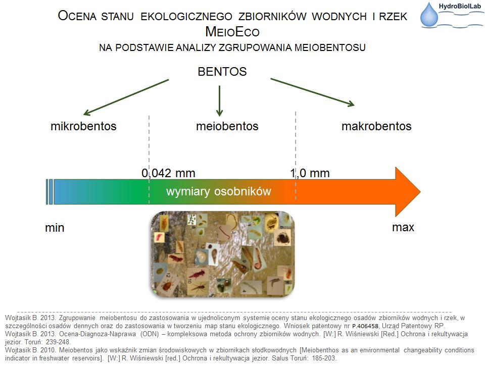 Ryc. 8. Meiobentos – kryterium wymiaru osobników należących do zgrupowania,